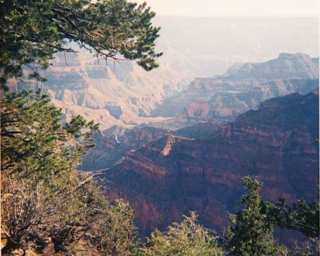 Grand Canyon for blog